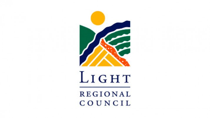 Light Council